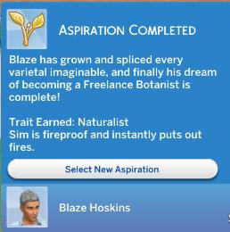 blazeasp
